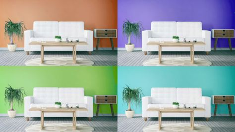 How to Choose Paint Colors for Your Home That You Won't