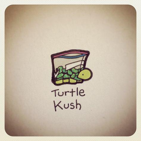 Turtle Kush #turtleadayjune - @turtlewayne- #webstagram