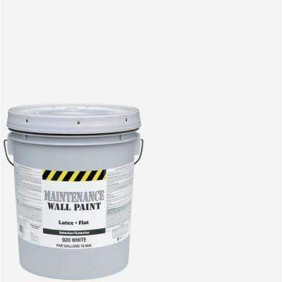 5 Gal Flat Interior And Exterior Paint Painting Paint Colors Flat Interior