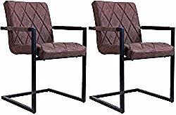 Schwingstuhl Tarent Lederimitat Vintage Look Im 2er Pack Braun Idimexidimex In 2020 Outdoor Chairs Outdoor Decor Vintage