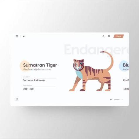 Next Generation Website Design For Your Inspiration