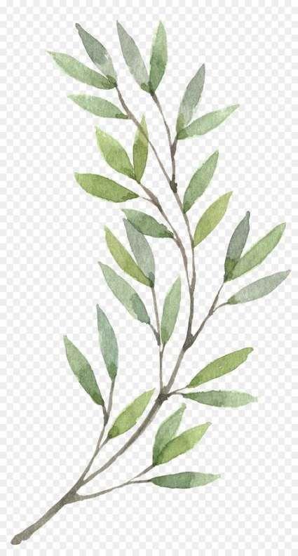 Super Plants Png Art Ideas Plant Painting Art Wreath Watercolor Watercolor Flowers Paintings