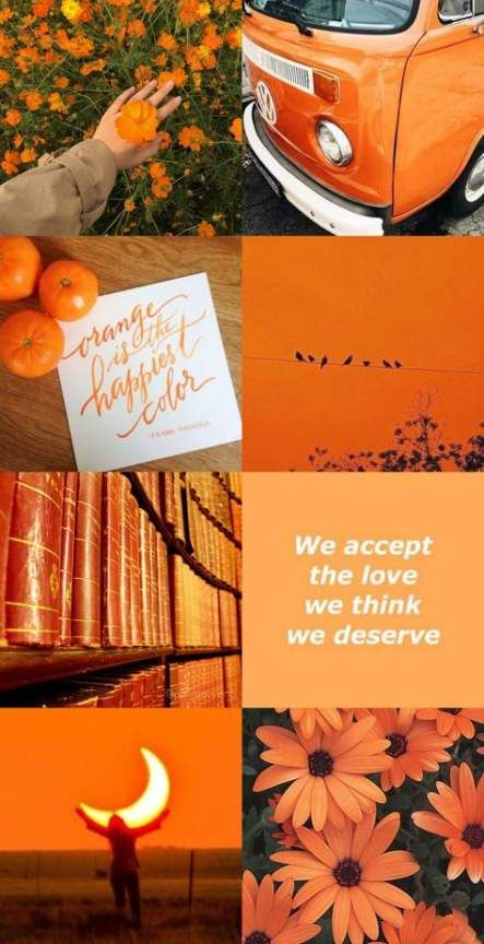 Trendy Orange Aesthetic Wallpaper Collage Ideas Wallpaper