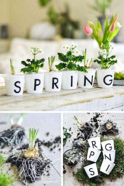 DIY Pflanzbecher für Frühblüher selber machen mit Buchstaben #greenery #spring #typo