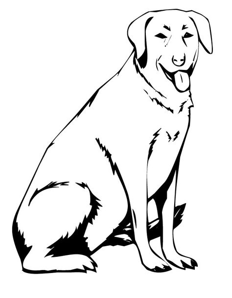 Black Lab Dog Coloring Pages Best Labrador Page Free