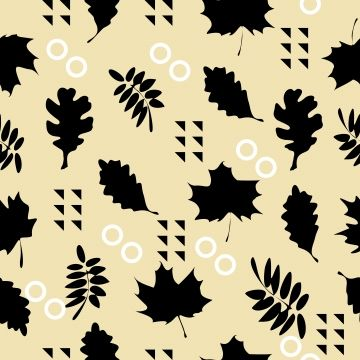 Design Background With Maple Leaves Cartoon Beautiful Black And White Png And Vector With Transparent Background For Free Download Maple Leaf Decorative Painting Black And White