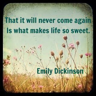 Top quotes by Emily Dickinson-https://s-media-cache-ak0.pinimg.com/474x/99/79/9a/99799a338e6ba742020312b584de5f6e.jpg