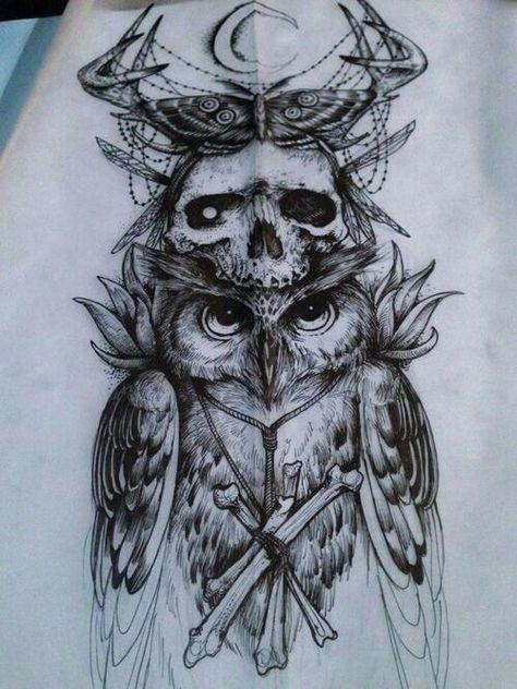 Coruja Caveira Borboleta Wolf Desenhos De Tatuagem De Coruja