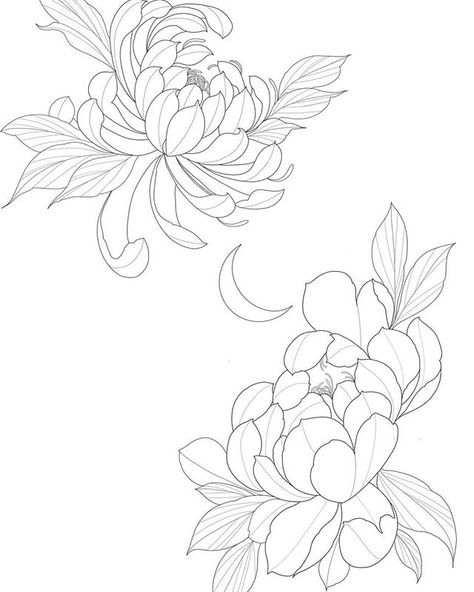 Instagram made me crop it a a bit, but I drew up these flowers today (peony and chrysanthemum) #yycartist #yycarts #draw #yyctattoo… Japanese Flower Tattoo, Japanese Flowers, Japanese Art, Tattoo Drawings, Body Art Tattoos, Art Drawings, Chrysanthemum Drawing, Flor Tattoo, Flower Line Drawings