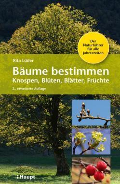 Luder Rita Baume Bestimmen Knospen Bluten Blatter Fruchte Der Naturfuhrer Fur Alle Jahreszeiten 978 3 258 08049 9 Www Baum Bestimmen Baum Pflanzen