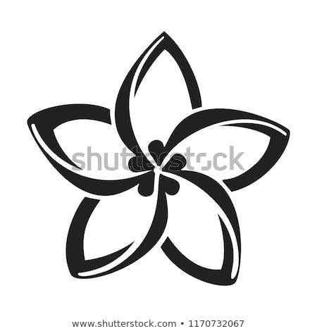 Plumeria Flower Icon Simple Illustration Of Plumeria Flower Vector Icon For Web Design Isolated On White Background In 2020 Flower Icons Simple Illustration Plumeria