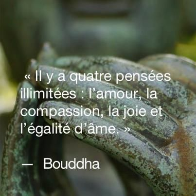 Extrem Citations option bonheur: Citation de Bouddha | BOUDDHISME  WI05