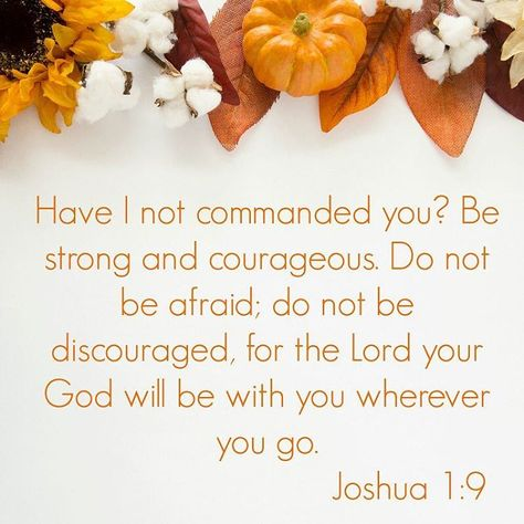 A good reminder today sunday neverforget scripture nofear beautyfortheheart