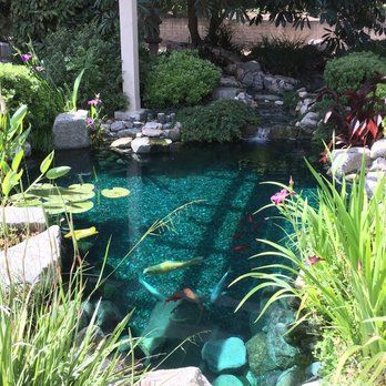 South Coast Botanic Garden   Palos Verdes Penninsula, CA, United States.  Koi Pond In The Japanese Garden. | Vacation: Long Beach 2015 | Pinterest |  Palo ...