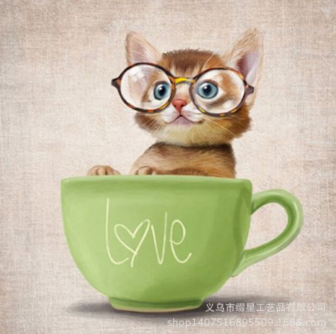 Online Shop Teacup Cat Kitten With Glasses 5D DIY Diamond Painting ...