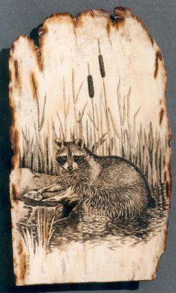 реликтовые картинки енота для выжигания по дереву добрый