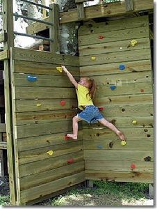 Diy rock climbing wall. This is similar to what we've built.