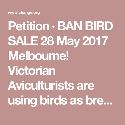 727 best CHANGE THINGS NOW ! images on Pinterest Animal rescue - how to research your cause for writing the petition