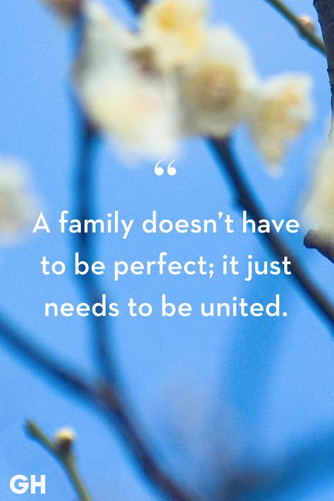 28 Family Quotes - Short Quotes About the Importance of Family