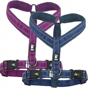 Hurtta Casual Padded Y Dog Harness Dog Harness Dogs Dog Safety