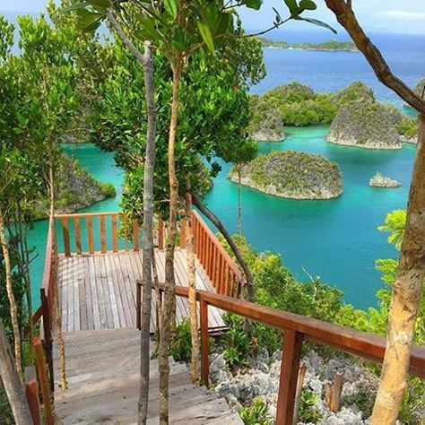 All You Need to Know Before Traveling to Raja Ampat Papua. #rajampat #papua #indonesia #papuabeach #visitindonesia