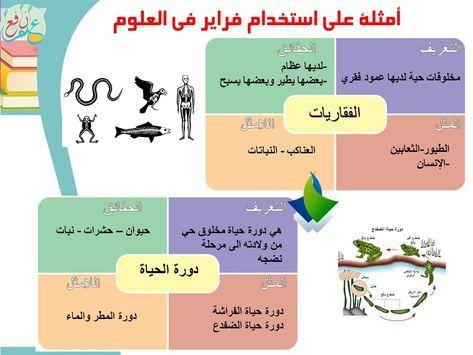 استراتيجية نموذج فراير ضمن استراتيجات التعلم النشط Frayer Model 3ilm Nafi3 Learning Activities Learning Teachings