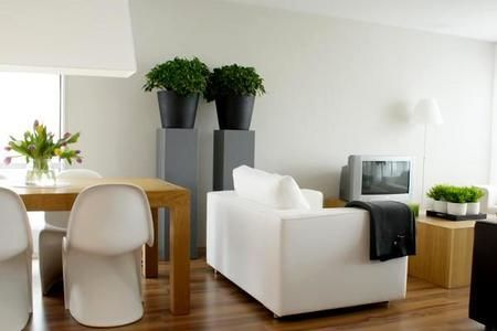 Rosliny Doniczkowe Cieniolubne Home Decor Home White Home Decor