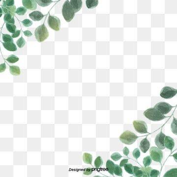 Aquarell Blatter Grenze Material Leaf Background Flower Border Flower Painting