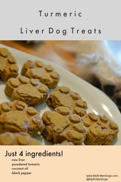 An Alternative To Golden Paste Raw Turmeric Liver Treats Dog