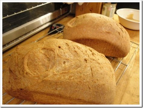 Seeking the Perfect Homemade Whole Wheat: Nourishing Traditions Soaked Buttermilk Bread (#. 7)