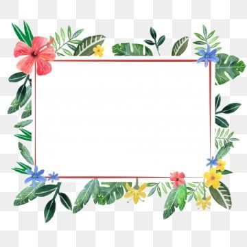 Small Fresh Leaves And Flowers Border Plant Illustration Flower Backgrounds Flower Drawing