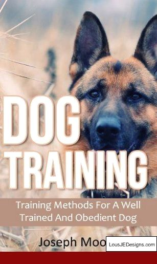 How To Train A Dog Not To Jump Fences And Pics Of Dog Training