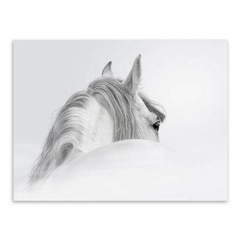 Beautiful White Arabian Horses Running Art Print Home Decor Wall Art Poster C