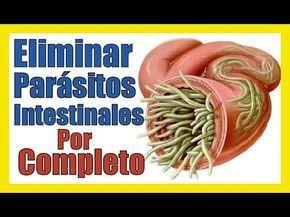 eliminar los parásitos intestinales de forma natural