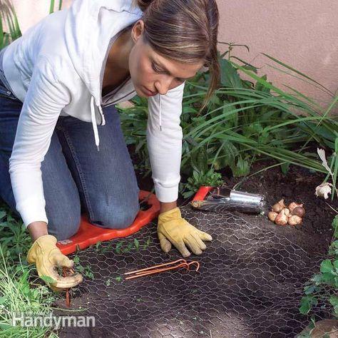 Tips for Easier Gardening