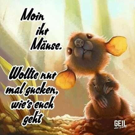 Maus Gutenmorgen Dance Quotes Humor Good Morning