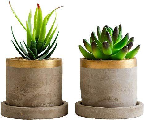 Amazon Com Linea Set Of 2 Artificial Succulent Plants With Pots Fake Succulents With 4 Inch Gold Pot Concrete Cement Planter Pot For Kitchen Counter Office In 2020