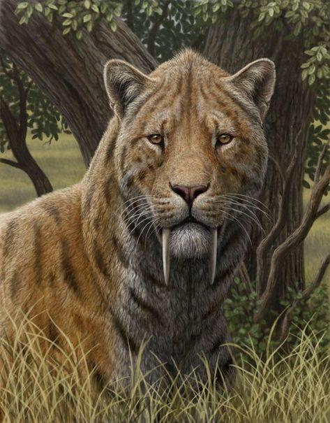380 Ideas De Animales Prehistóricos En 2021 Animales Prehistóricos Prehistorico Animales