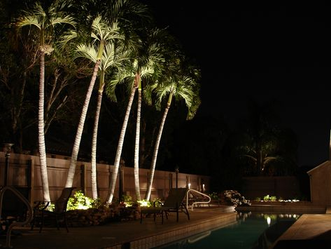 Outdoor Lighting Franchise Of Tampa St