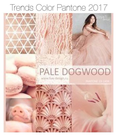 Pale Dogwood Pantone Trends Spring Summer 2017 by anan-liza on Polyvore featuring polyvore fashion style clothing
