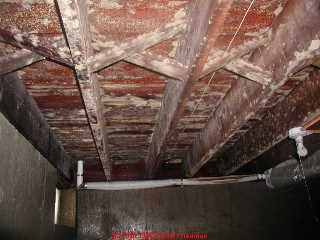 The Object In Cleaning Mold From A Wood Surface Is To Remove All Fungal Material Cleaning Mold Mold Remover Mold In Basement