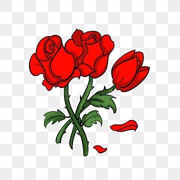 น กวาดภาพประกอบก หลาบแดง ก หลาบแดง ก หลาบแดงสวย การ ต นก หลาบแดง การตกแต ง ก หลาบแดง ความร ก ความร ก ดอกก หลาบส แดง ร ก ก หลาบส แดงภาพ Png และ Psd สำหร บดาวน ในป 2021 ก หลาบแดง ก หลาบ ความร ก
