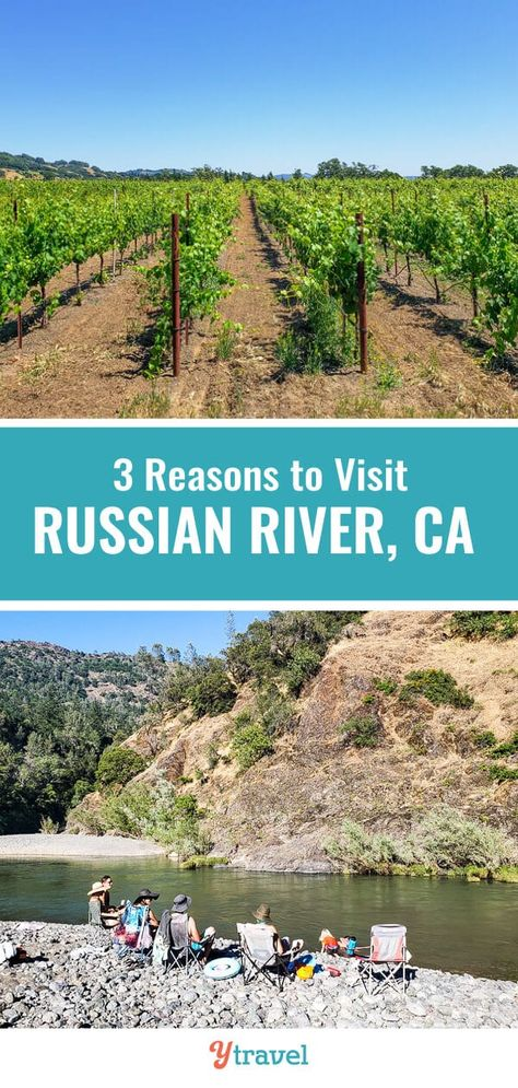 3 Reasons to Visit Russian River, California (tubing   wine   beer).  Russian River in California is a great family travel destination on a road trip or California vacation.  Get away from the cities and crowds and check out the beautiful scenery of the Russian River.  Have some water adventure tubing with kids and friends, check out the great camping spots, and enjoy local wineries and breweries.  For a fun and laid back travel experience, check out this travel guide! #RussianRiver #California