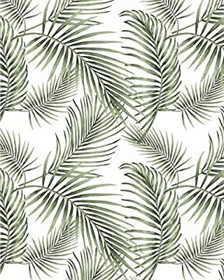 Pin By Jamie Dc On Wallpaper Palm Wallpaper Jungle Wallpaper Green Wallpaper
