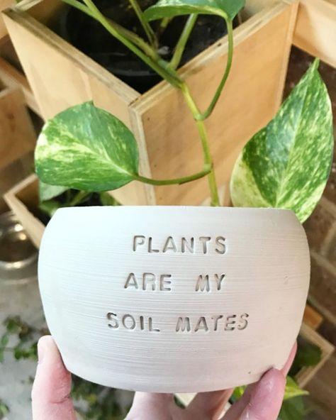 Planting Succulents, Potted Plants, Garden Plants, Planting Flowers, Growing Flowers, Painted Plant Pots, Painted Flower Pots, House Plants Decor, Plant Decor