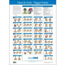 Trigger Point Charts 5 Chart Set Trigger Points Types Of Headaches Chart Migraine Trigger Points