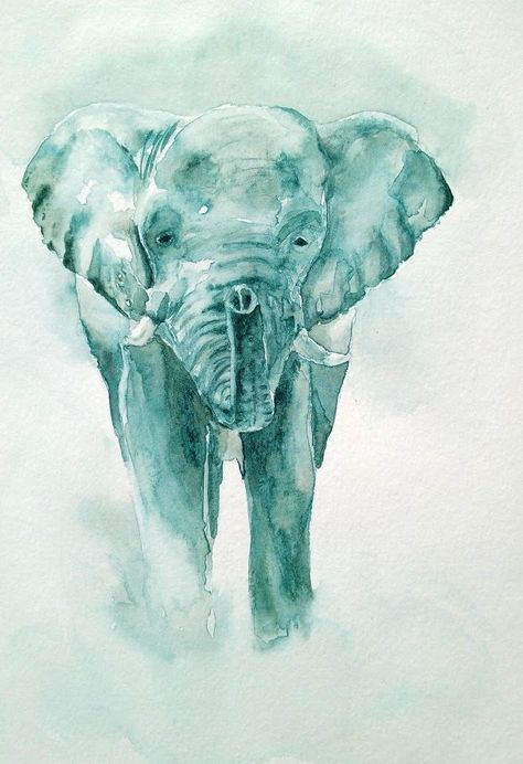 Elephant A L Aquarelle Elephant Animal Paintings Watercolor