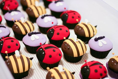 Image detail for -... cakes bug cupcake ideas insect cupcakes cute bug cupcakes bug cup