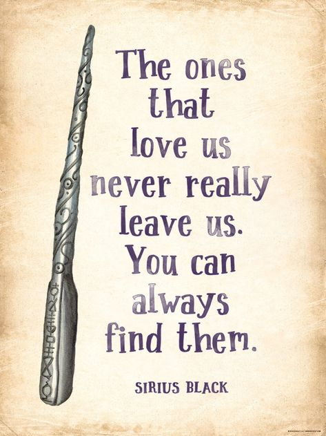 Famous Harry Potter Quotes about Friendship, Family and Love