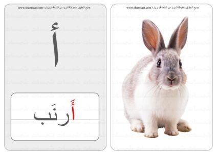 حرف كلمة صورة بطاقات الحروف والحيوانات 1 In 2020 Animals Kids Rabbit